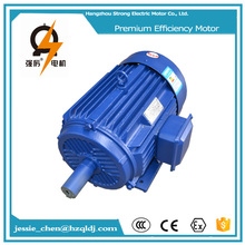 1000 watts ac induction electronic motor with low price