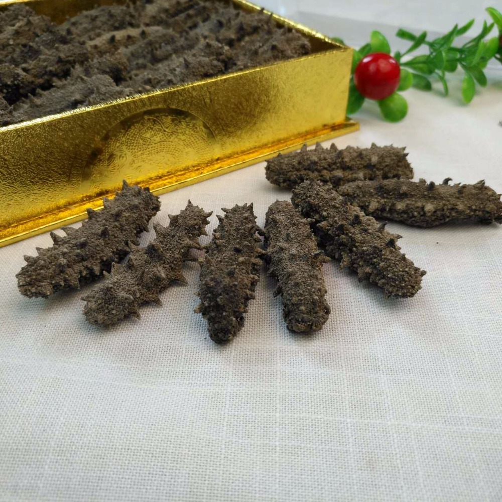 100% natural wild sea cucumbers for health cares to improve immune system