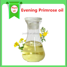 Hot sale Plant extract Evening primrose seed extract/ Evening primrose oil/ Oenothera Biennis