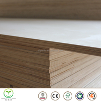 MDF/commercial birch veneer plywood sheet prices
