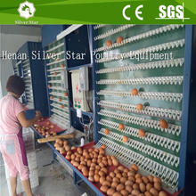 Full automatic chicken egg collector/layer poultry cages for kenya farms