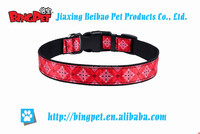 Hot sale fashion and printed flower nylon dog collar