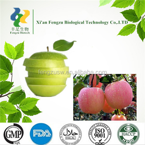Best Quality Raw material green apple powder & turkish apple tea & apple extract powder