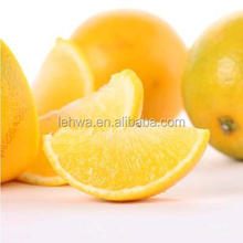 hot sale high quality mandarin orange pulp sacs