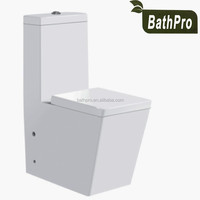 One Piece Ceramic Dual-Flush P-trap S-trap Optional Washdown/Siphonic WC Toilet