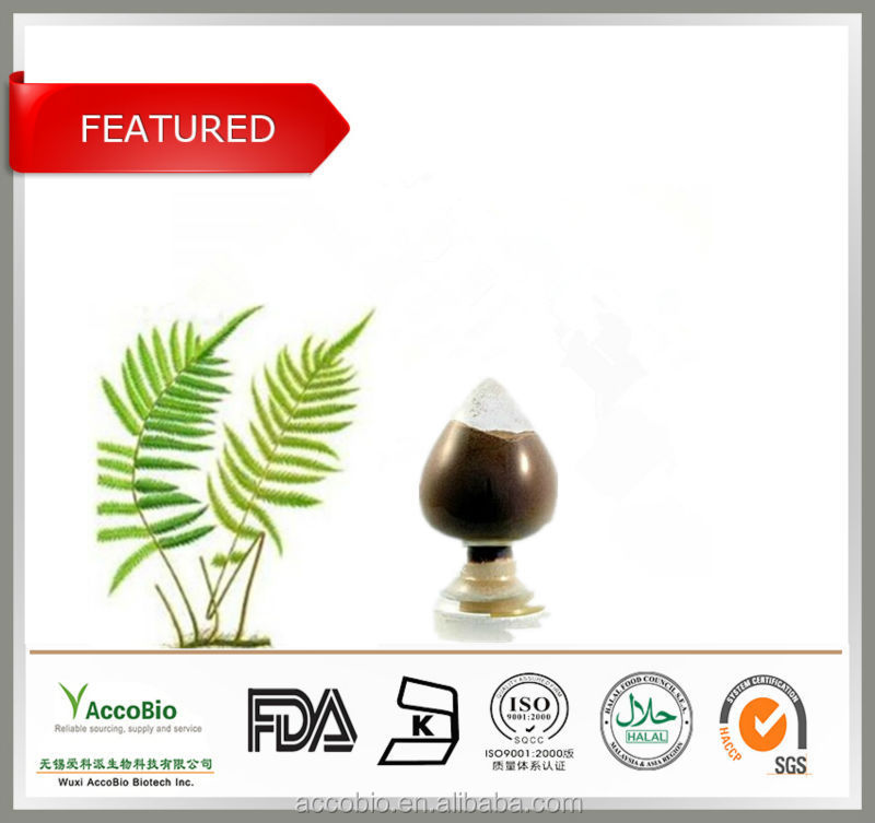 100% Natural Factory Supply Polypodium leucotomos extract/Polypodium leucotomos