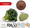 Wholesale natural broccoli seed extract with cheap price
