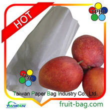 TPBI mango protection bag cover fruit protection bag mango
