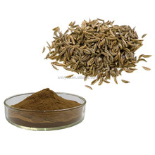 High quality and best price caraway seed \caraway extract\Caraway seed extract