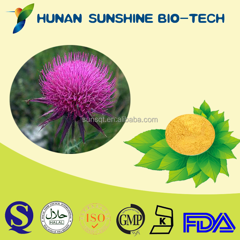 Free Sample Immunity Boosters Vitamins and Herbal Brain Tonic Silymarin Milk Thistle Extract Powder