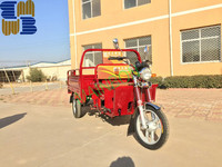 cargo tricycle with ELECTRIC BATTERY TEB-64