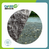 Fishery/Chicken/Pilget/Duck Probiotics Feed Additvie Powder Bacillus Subtilis 200 Billion cfu/g from China Lvkee