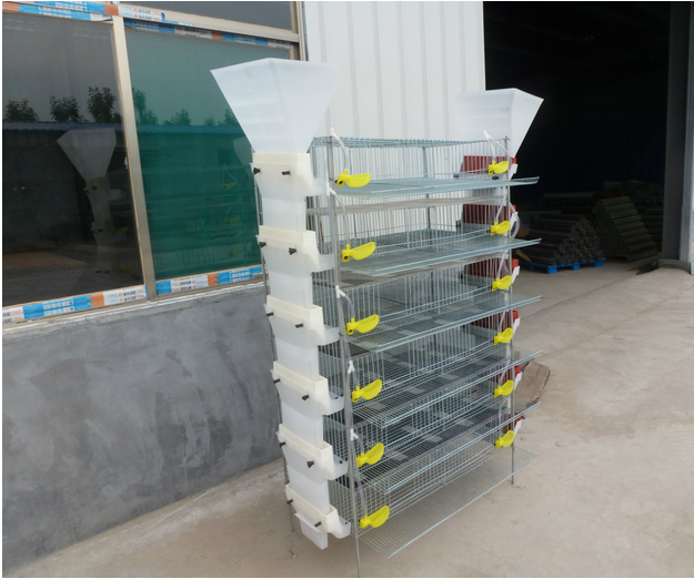 China newly design H type quail breeding cage