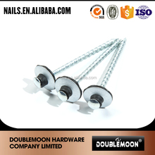 galvanized plastic head stainless steel nails factory price
