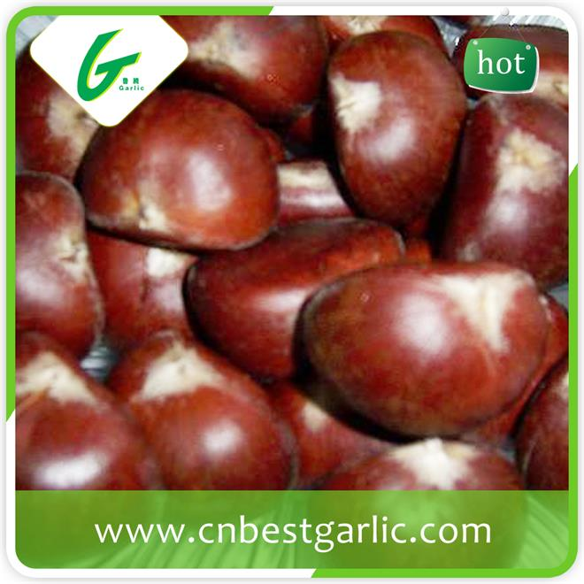 Good quality and new crop frozen peeled cheap price fresh chestnut
