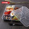 rectangular PP 5oo ml clear plastic food to go box