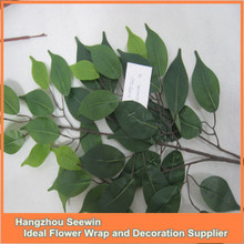 artificial ficus leaves.