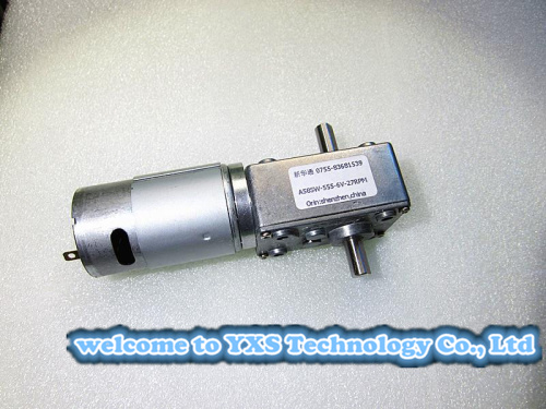 A58SW555S double shaft turbine worm gear motor 12V-24V DC motor with self-locking torque