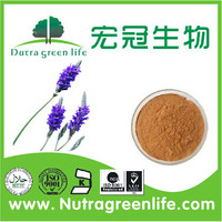 ISO Certificated Lavender Extract 10:1,20:1 /Lavandula Angustifolia