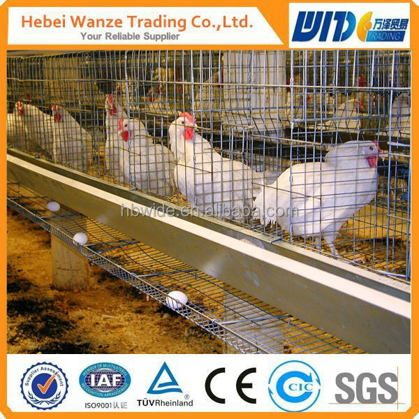 cages for laying hens used , battery cages laying hens,poultry farming equipment