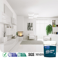 Odorless Brilliant White Wall Paint