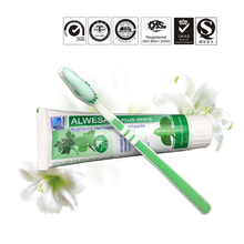 herbal clove toothpaste chewing gum with 55g or 105g africa t-guard pearls whitening toothpaste