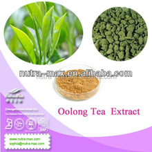 Oolong Tea Extract,Oolong Tea Powder,Instant Oolong Tea Powder