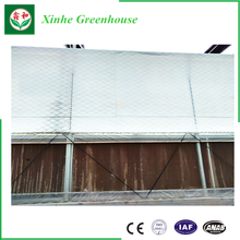 Galvanized Steel Structure Glass Cover Commercial Greenhouses