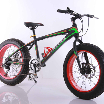 High Quality 26 Inch Fat tyre bike /Snow Bike 21 Spd Alloy frame for you /quality choice