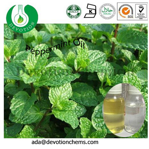 Pure Organic Mentha piperita Essential Oil/ Peppermint oil