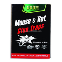 disposable high sanitary 21*16cm mouse and rat glue trap paper board