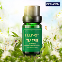OEM ODM Essential Oil Products Original Tea Tree Essential Oil