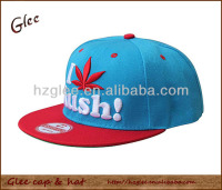 Fashion factory 3D hat snap back hat