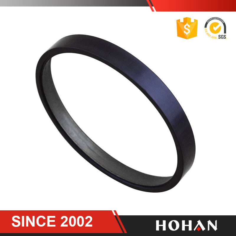 AUTO ABS SENSOR RING ABS Rings Magnetic ABS Ring for Ben z 96 POLES pass Ts16949 Certification