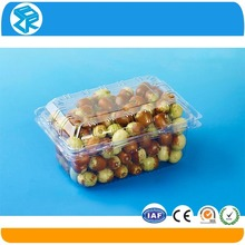 durable fruits packaging transparent PET large plastic containers