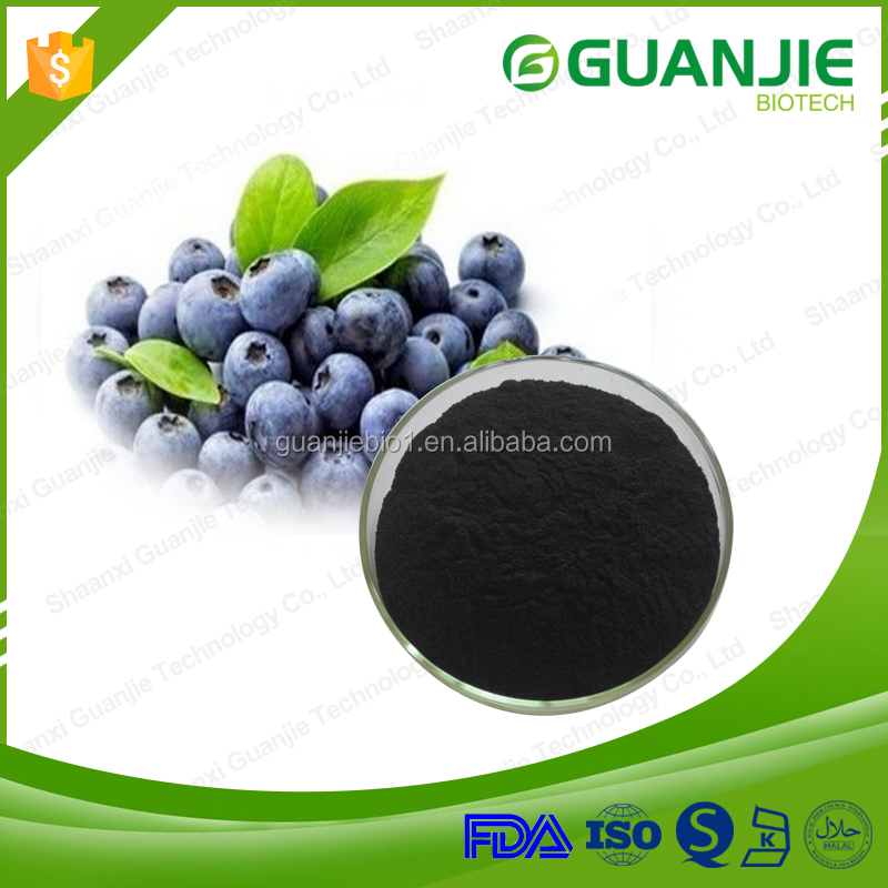 13 Years Manufactory Supply High Quality 25% Anthocyanin Bilberry Extract