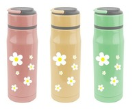 novelty stainless steel drinking bottles