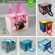 6 Pack insulated portable beer Can Custom Cooler Bag