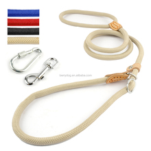Berry Good Quality Stitching Safety Nylon Pet Rope Slip Dog Lead