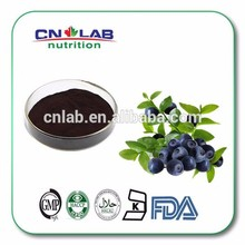 pure natural Blackberry pomace extract powder/blueberry pomace extract factory price