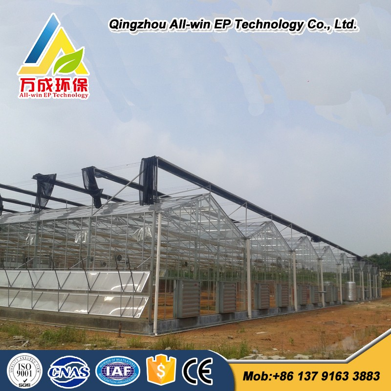 Low Cost Hydroponics Agricultural Commercial Glass