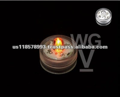 United States Top Quality LED Decorative Light