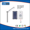 Quality and quantity assured decorative energy saving solar lamp