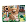 wall hanging pictures 3d lenticular dog pictures