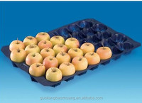 Customizable High Quality 29x39cm PP Fruit Plate Tray