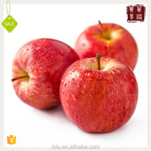 Having Good Sense Dried Apple To Mind Chinese Green Apple