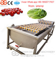 Factory Direct Sale Best Quality Cleaner Tomatoes Commercial Washing Machine