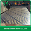 Good quality Finger joint Plywood / film faced plywood to Sri Lanka