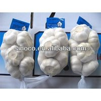 fresh white garlic natural garlic china supplier