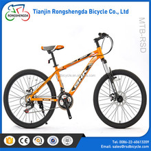 New arrival fashion design high quality Mountain bicycle/Hot selling Mountain cycle /made in China OEM best mountain bikes